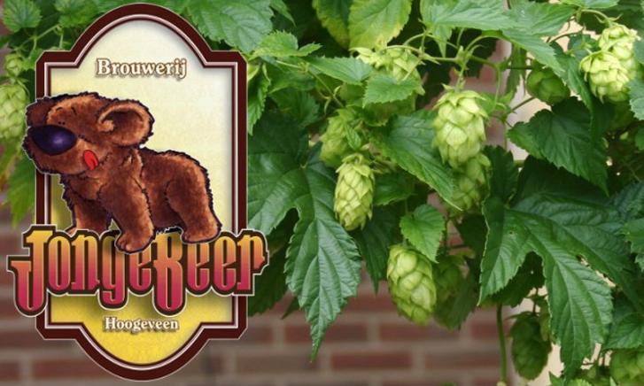Open Brouwerijdag  Jonge Beer brouwerij
