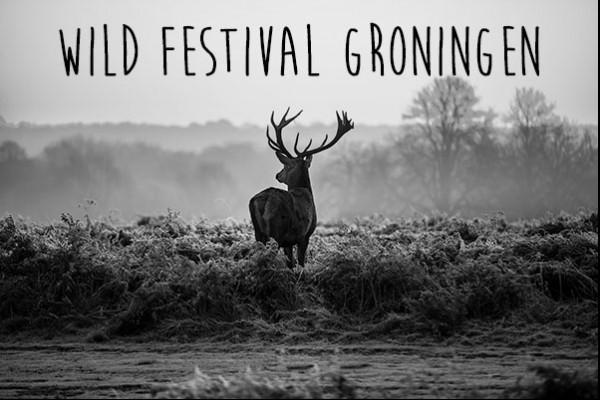 Wild Festival Groningen 2019
