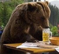 beer met bier