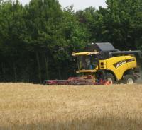 Gerst oogsten