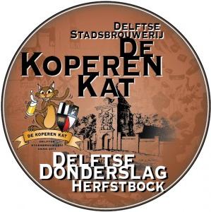 Delftse donderslag logo