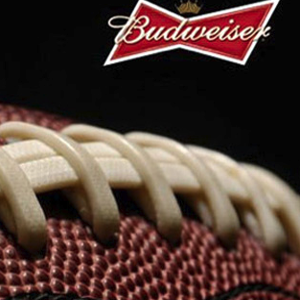 Budweiser Super Bowl commercial 2017