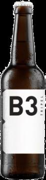 b3 tripel fles 33cl