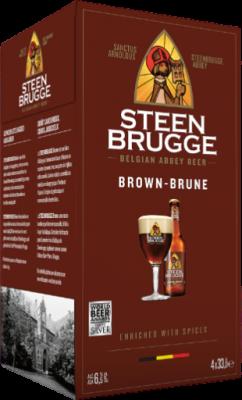 Steenbrugge Bruin 4-pack flesjes 0,33l